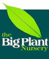 The Big Plant Nursery - Creative Landscape